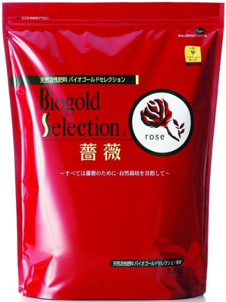 画像1: セレクション 薔薇 1kg (1)