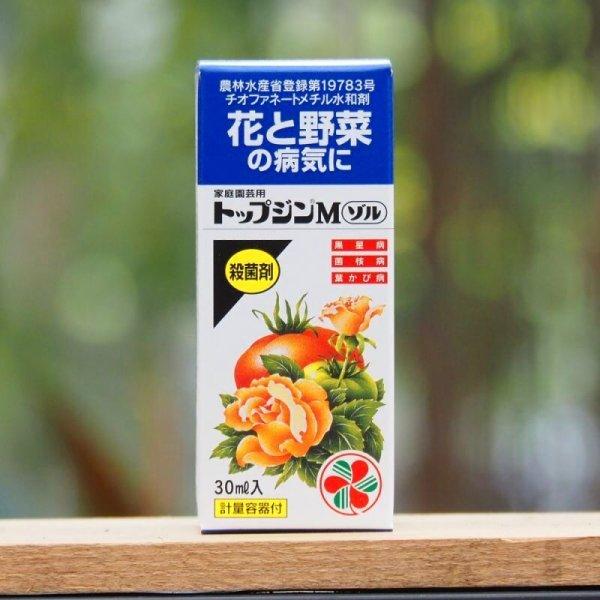 画像1: 【うどんこ病・黒点病に優れた効果】トップジンMゾル (1)
