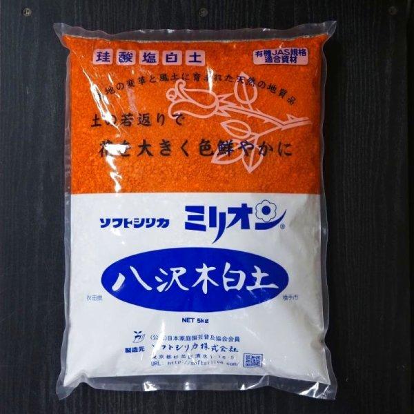 画像1: ミリオン(1kg入) (1)
