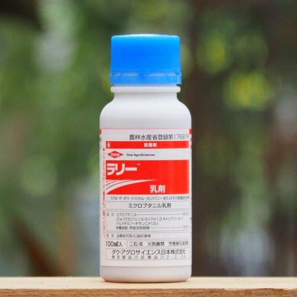 画像1: 【黒点病・うどんこ病に!】ラリー乳剤 (1)